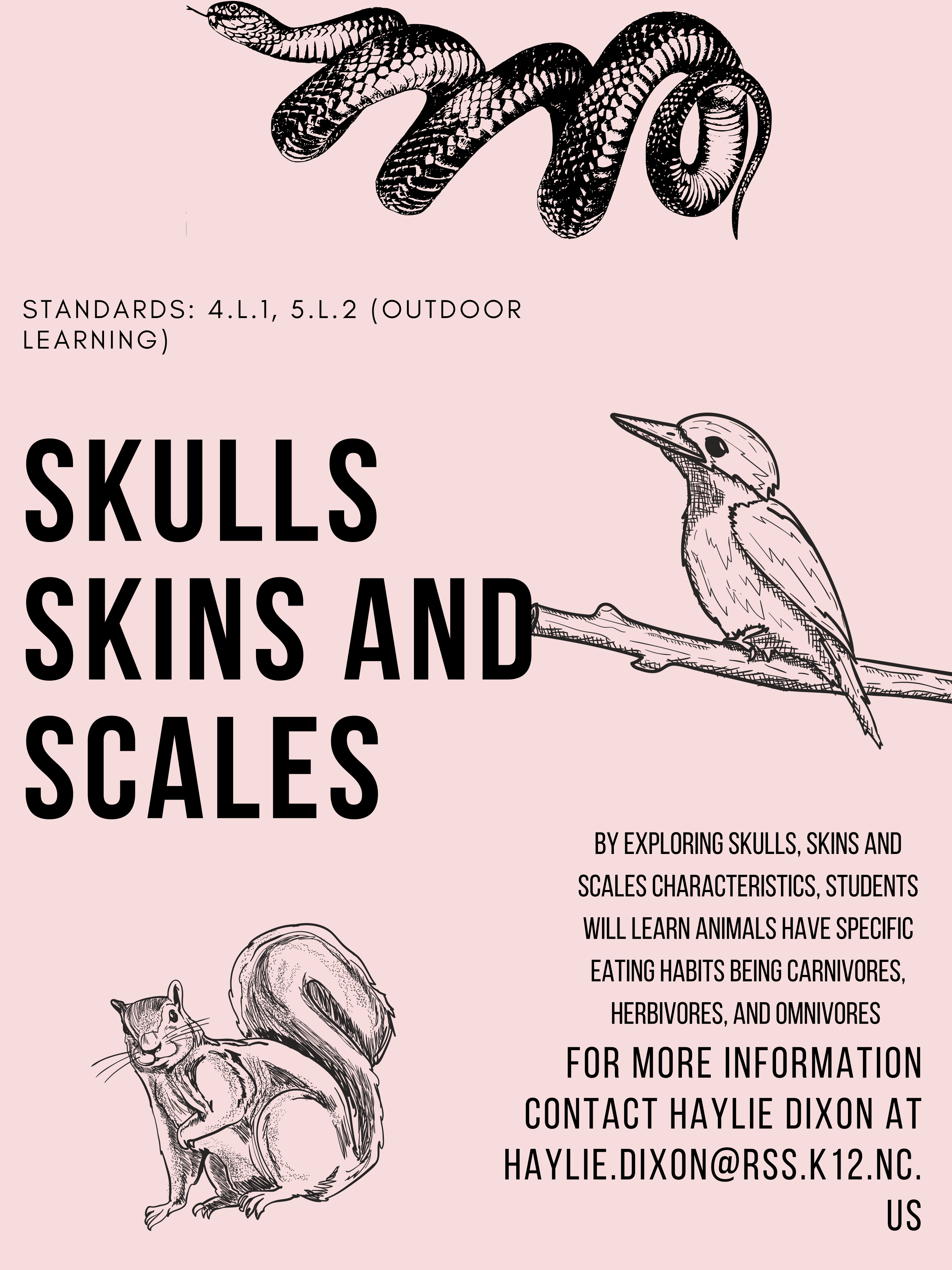 Skulls, Skins and Scales