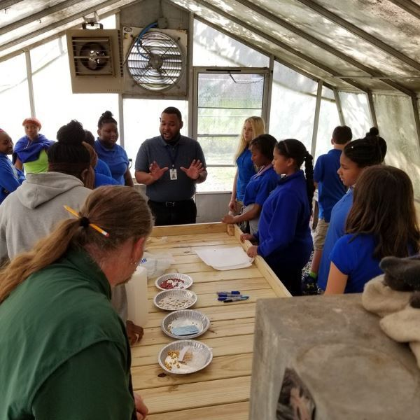 Stem club at Knox Middle School newly renovated green house